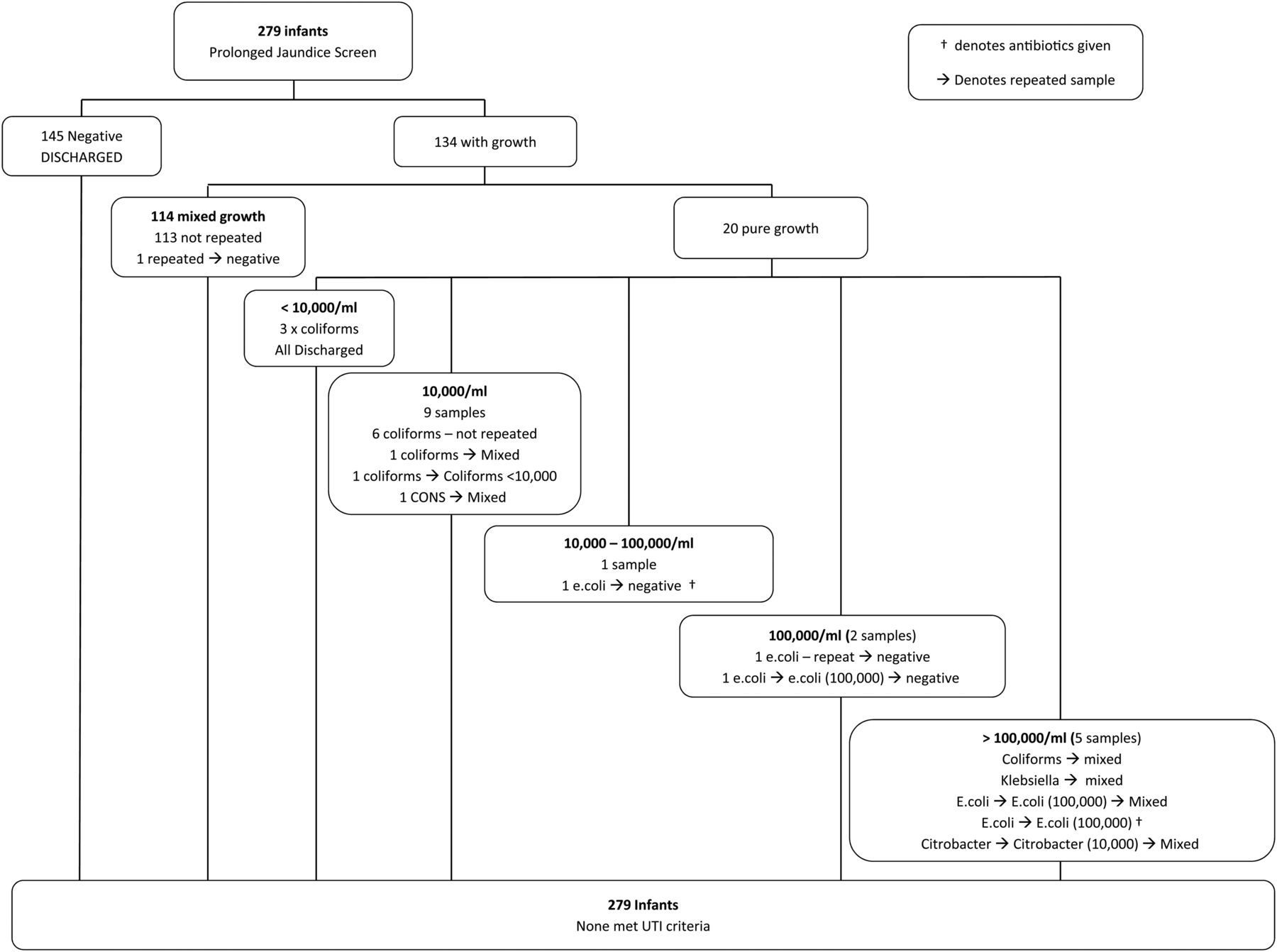 Is Screening For Urine Infection In Well Infants With Prolonged Jaundice Required Local Review And Meta Analysis Of Existing Data Archives Of Disease In Childhood