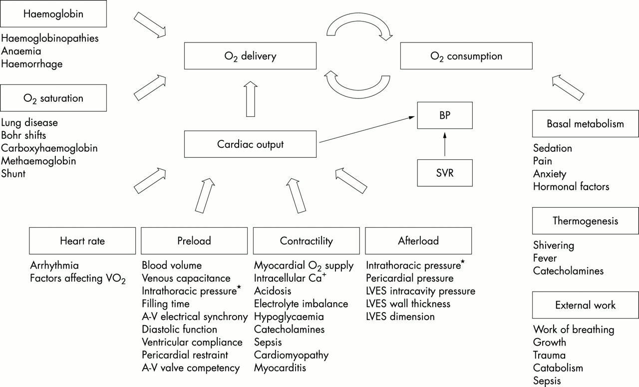 Monitoring cardiac function in intensive care | Archives of