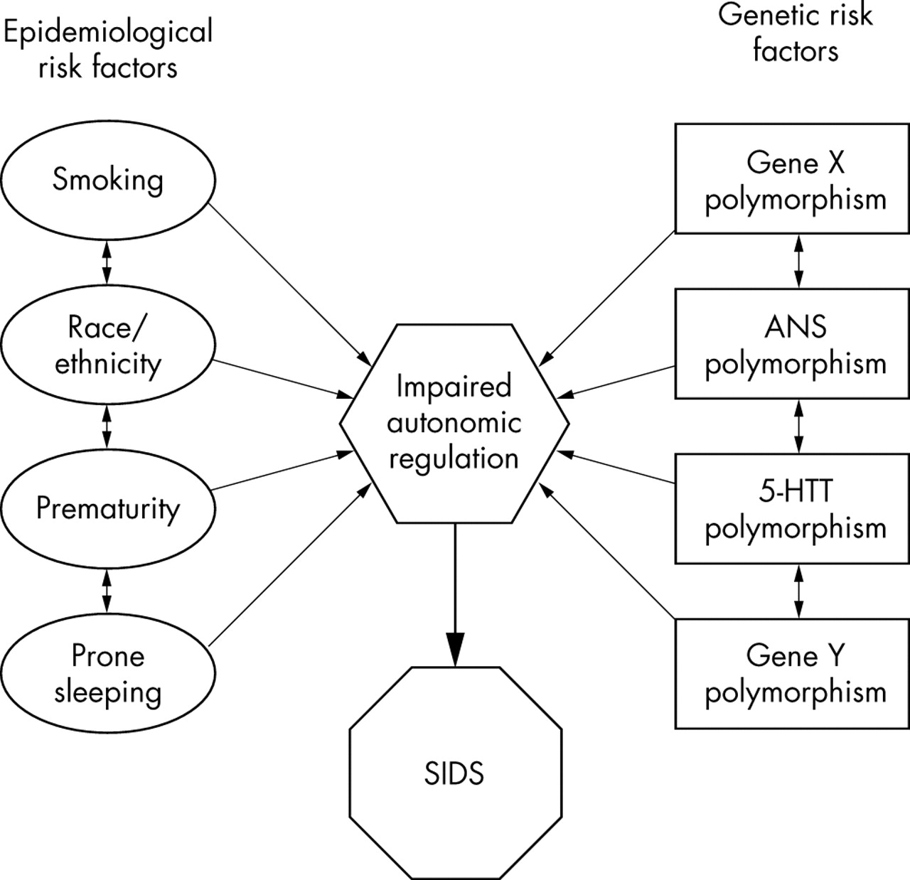 Gene Environment Interaction >> Gene Environment Interactions Implications For Sudden