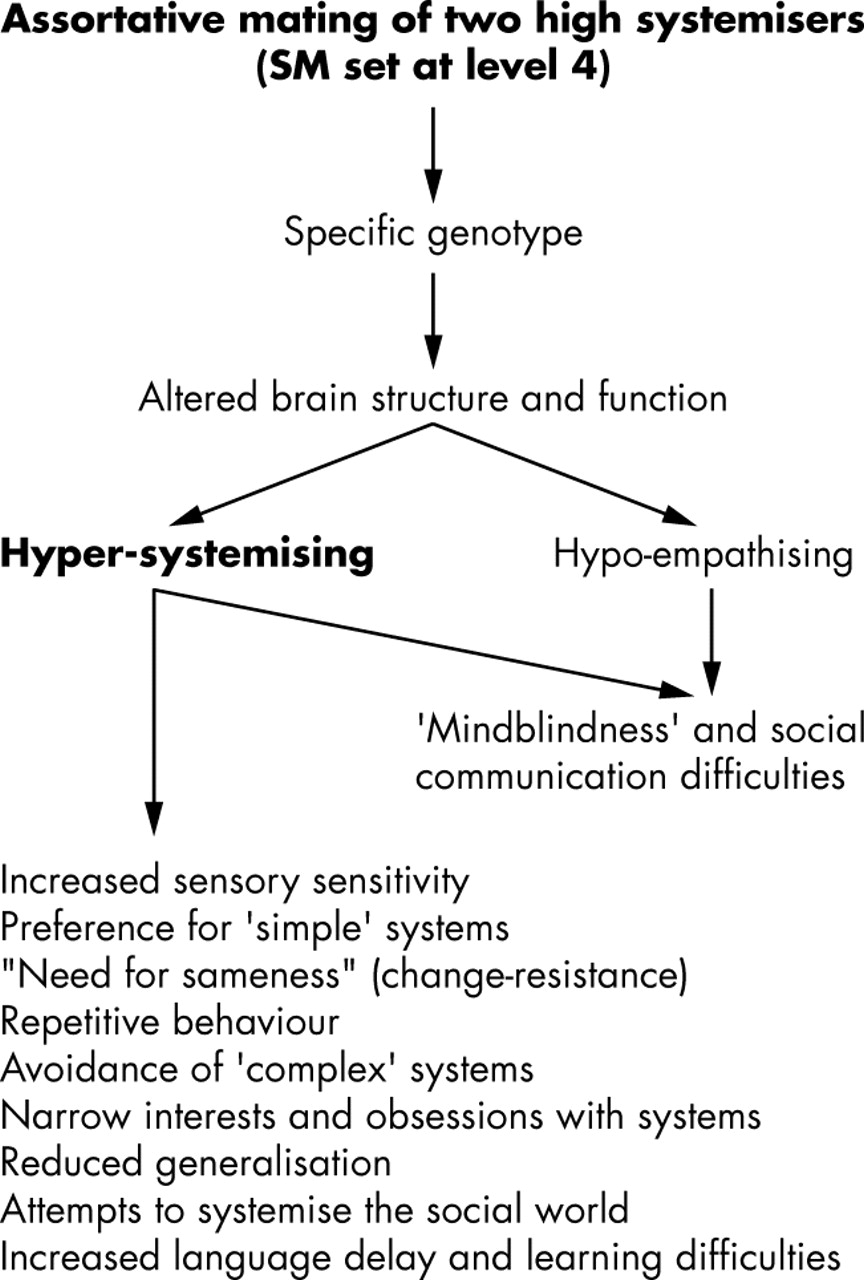 Two new theories of autism: hyper-systemising and