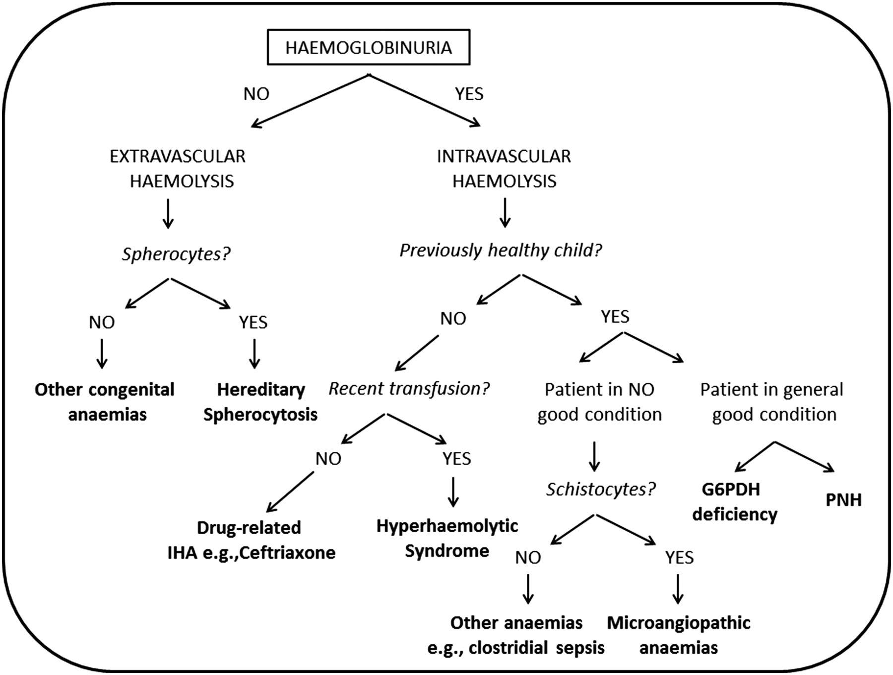 Diagnostic and therape...