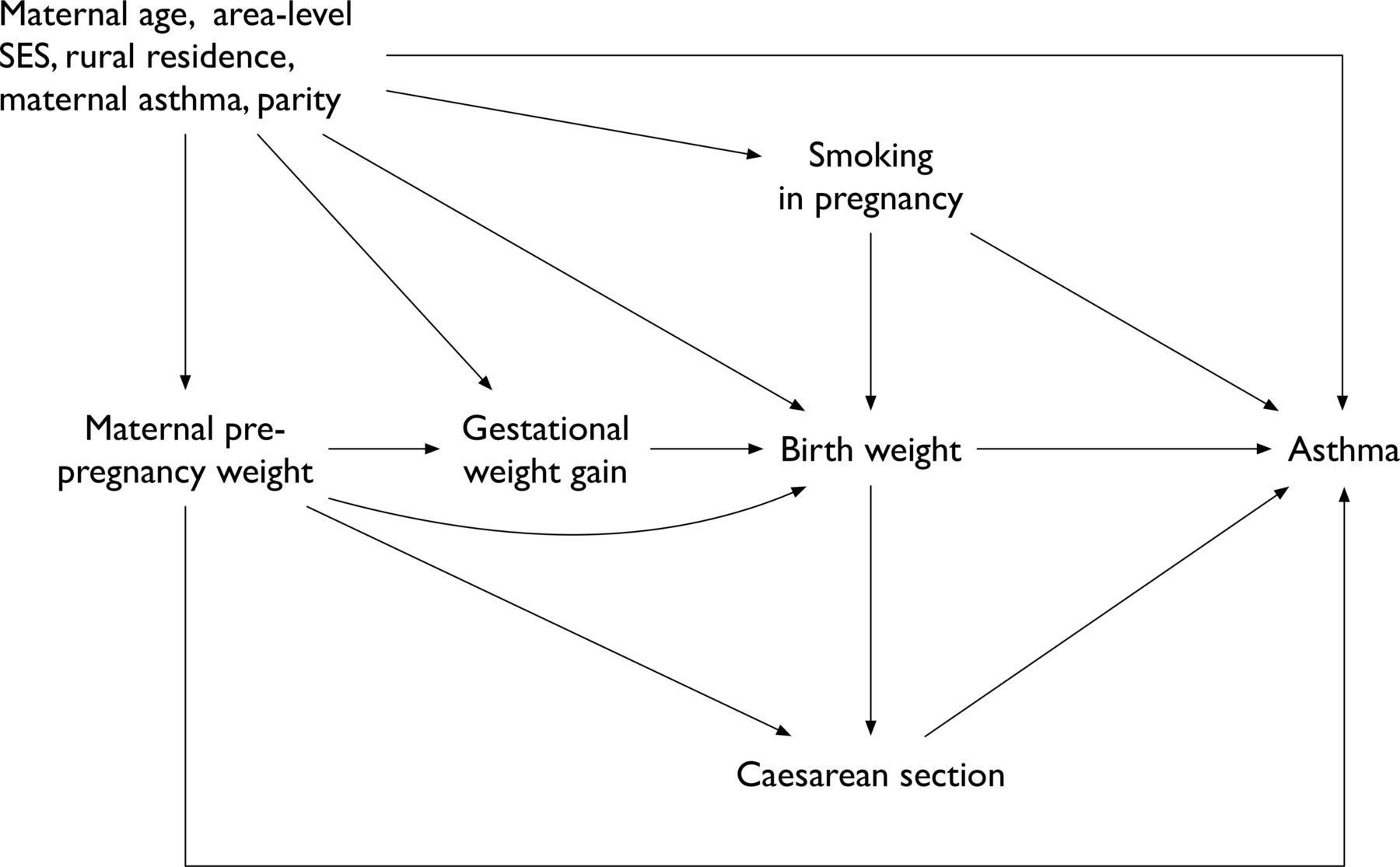 Birth Weight For Gestational Age And The Risk Of Asthma In Childhood